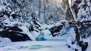 Erlebnisse im Winter